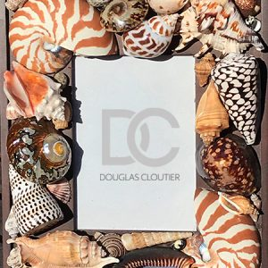 ASSORTED SHELL WOOD FRAME 4X6